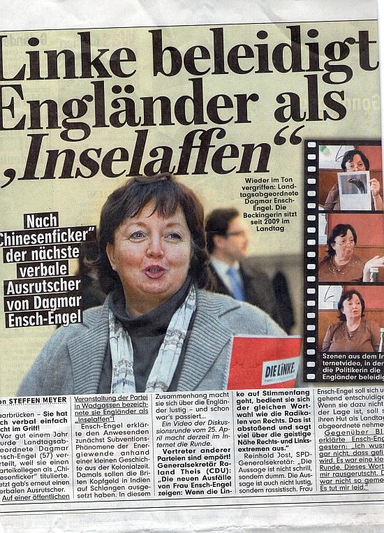 http://www.demokratisch-links.de/ie_dokumente/Saar/130517_EEs-inselaffen.jpg
