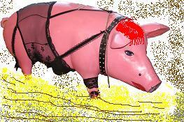 swinja